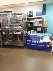 Event Pictures – paws fur life In ohio